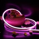 Indicatore luminoso al neon ultrasottile della corda della flessione di alta luminosità LED