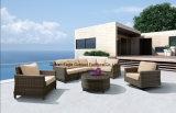 Insieme esterno del sofà dell'angolo di combinazione della mobilia