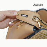 Zexin zippered-Flap con l'unità di elaborazione Fashion Crossbody Handbag Zxl001 di Decorative Wardware