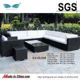 정원 Furniture Rattan 또는 Rattan Furniture Set (ES-OL043)