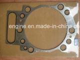 Junta principal 3634664 de las piezas del motor de Cummins K19