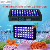 Gip Programmable 120W 165W LED Aquarium Lighting