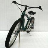 Bici eléctrica del litio de 26 pulgadas (LN26C1501)