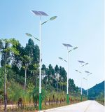 Heißes Solarstraßenlaterneder Verkaufs-20W-200W im Solar-LED-Straßenlaterne-Preis