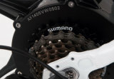 جيّدة يبيع جبل أسلوب درّاجة كهربائيّة مع [بفنغ] [سوإكسه] خلفيّة يزوّد محرّك