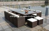 Set/Rattan 옥외 Furniture/Outdoor 식탁 (DH-896)를 식사하는 등나무