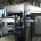 Vácuo das caixas de almoço de Ruian Donghang que dá forma à máquina