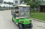 Billig 2 Personen-elektrisches Golf-Ladung-Auto