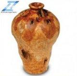 Racine en bois découpant l'urne moyenne