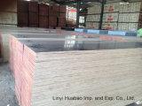 La película de Brown /Black hizo frente a la base del álamo de la madera contrachapada para la construcción
