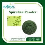 Spirulina  Extract  Spirulina Powder