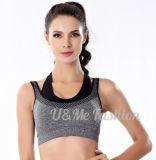 Reggiseno trasversale sexy stabilito dell'abito di sport di yoga senza giunte Shockproof di forma fisica