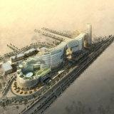 Wonderfullプロセスの国際的なプロジェクト3Dのレンダリングの目の概観