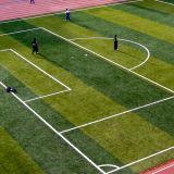 Grama artificial profissional do futebol e do futebol da série da DM