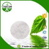 Fertilizante soluble en agua rápido 19-19-19 del desbloquear el 100% NPK