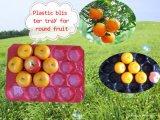 Bandejas plásticas de los PP de la venta popular para el empaquetado de la fruta y verdura