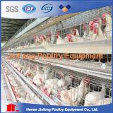As aves domésticas automáticas mergulham a gaiola da galinha da bateria da grelha