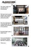 Rustieke Porcelain Tile voor Floor 600X600 (bce-04)