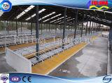 Панель/Headlock коровы фермы с Hot-Galvanized стальной трубой (FLM-F-009)