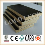 13-Ply Black Film Faced Plywood, Marine Plywood, Shutter Plywood