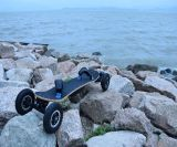 형식 Longboard 4 바퀴 전기 스케이트보드