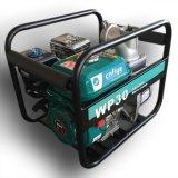 Berufsbenzin-Wasser-Pumpe der qualitäts-Fy80
