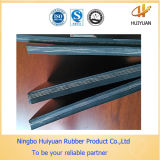 Gutes Quality und Competitive Price Nylon Conveyor Belt