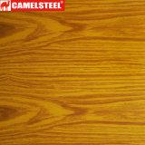 최신 판매! Shandong에서 나무로 되는 PPGI 강철 코일 Camelsteel