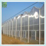농업 폴리탄산염 벌집 장 녹색 집