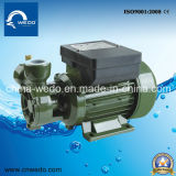 bomba elétrica 0.25kw/0.55kw da agua potável da série do DB (dB125/dB550) tomada de 1 polegada