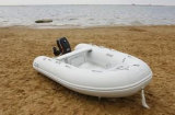 Aqualand 9feet 3m Inflatable Fishing BoatかRib Motor Boat (RIB300)