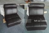 Mobília moderna do sofá do couro da sala de visitas (B010)