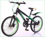 20 Bike горы скорости MTB дюйма одиночный сделанный в Китае (MB-036)