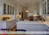 De stevige Houten Keukenkasten van de Hoogste Kwaliteit met de Deur van de Schudbeker (wh-D991)