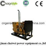 o melhor gerador de potência 50Hz/60Hz do gás natural da qualidade 40kw