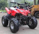 Sale를 위한 판매 Promotion OEM Quad Bike