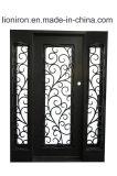 Двери входа Низкой-E стеклянной ковки чугуна внешние с бортовыми светами
