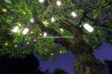 Haute énergie avec le prix bon marché arrêtant les lumières solaires