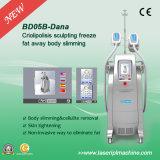 El adelgazar gordo del helada de la maneta de Bd05b 2/máquina de la pérdida de peso de Cryolipolysis