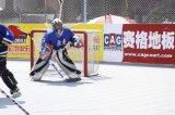 Tipo azulejos del hockey, suelo modular de la corte del hockey, suelo de la red de Plasic