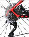 Lega Bike con Sram Discbrake