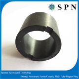 Anello del magnete del ferrito con tecnologia asciutta della pressa per il rotore del motore