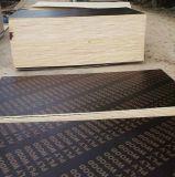 La película concreta Shuttering del encofrado de la madera contrachapada del encofrado hizo frente a la madera contrachapada para la construcción