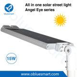 15W prodotti esterni solari di energia LED con il sensore di movimento