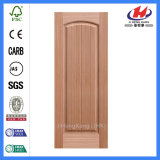 EV-Oak 05s China International Doorskin