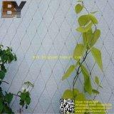 Сетка завода стены фасада зеленого цвета ландшафта веревочки нержавеющей стали взбираясь