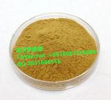 Extrato do Ginseng de Panax/Ginsenosides (baixo resíduo de inseticida)