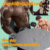 Steroide liquido di Bodybuilding della bottiglia della fiala dell'olio del ciclo di Enanthate del testoterone