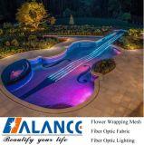 Zij Glow Fibre Optical Light voor Swimming Pools