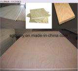 prix de contre-plaqué de 19mm/contre-plaqué d'Okoume/contre-plaqué blanchi de peuplier à vendre